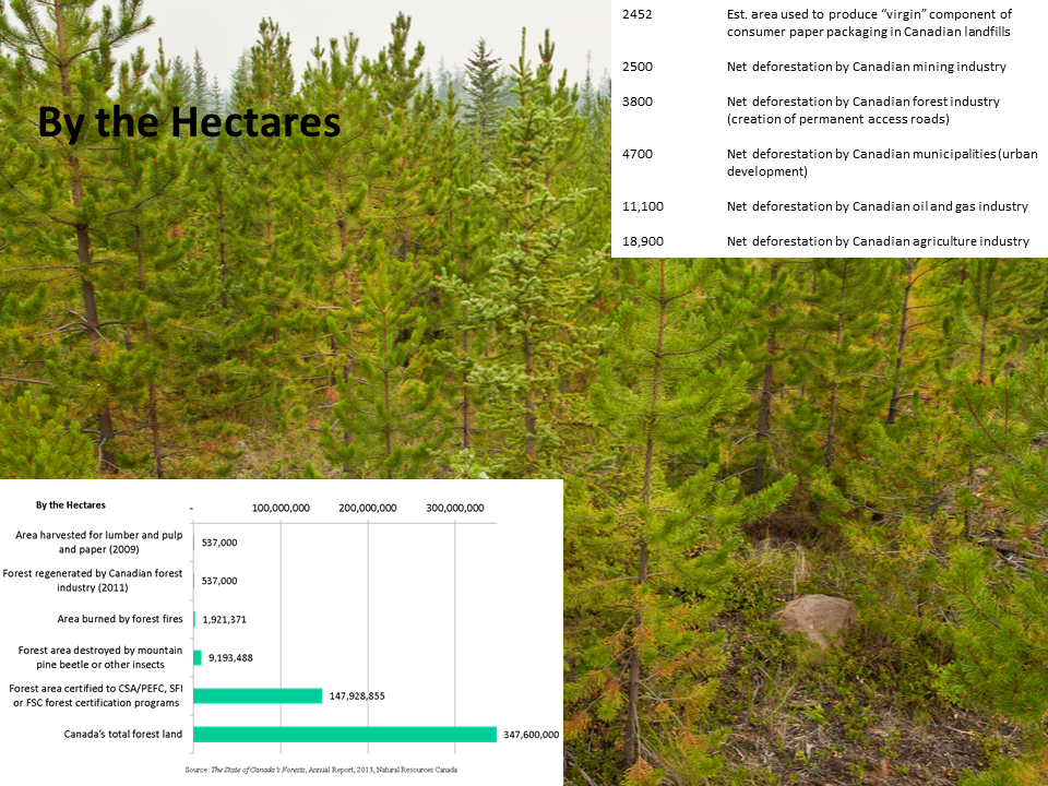forestrychart
