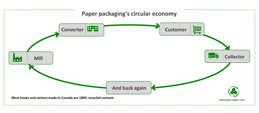 Cardboard Recycling chart of the circular economy